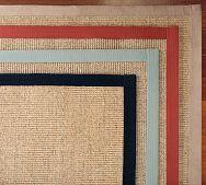 color bound sisal rug