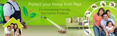 Call at Got irritated from rodents, cockroaches and flies? Mourier pest control in Gurgaon gives you and your home a complete protection from these pests with immediate effect. Call your avengers now. Best Pest Control, Pest Control Services, Cockroach Control, Scary Animals, Humming Bird Feeders, Protecting Your Home, How To Remove, Good Things, Health