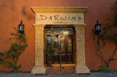 Darwin's on Fourth, Sarasota, FL