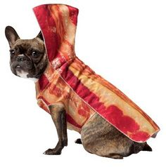 Bacon Dog | 16 Adorable Pets Who Dressed Up As Food For Halloween