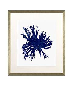 Navy Blue Coral w/ White Background B Framed Giclee