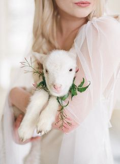 Spring Bridal Inspiration with a Baby Lamb - Wedding Sparrow Just Girly Things, Beautiful Things, Baby Lamb, Little Bo Peep, Sheep And Lamb, Sheep Farm, Wedding Blog, Wedding Shit, Wedding Things