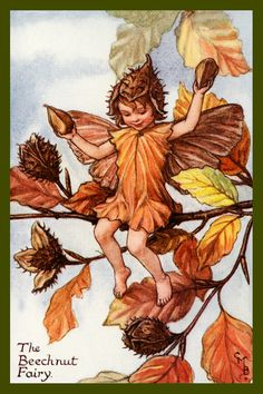 The Beechnut Fairy by Cicely Mary Barker from the 1920s. Quilt Block of vintage fairy image printed on cotton. Ready to sew.  Single 4x6 block $4.95. Set of 4 blocks with pattern $17.95.
