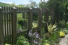Mirrors on fence.  Keeping them clean might be a problem, but having your yard appear bigger is pretty cool!