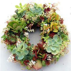 wholesale wreaths moss - Google Search