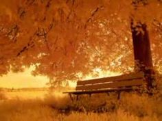 """Forever Autumn"" Beautiful autumn scenes. Music from Justin Hayward.  A gentle rain falls softly on my weary eyes  As if to hide a lonely tear  My life will be forever autumn  'cause you're not here..."