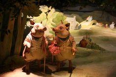 Beatirx Potter Museum, pigs on countryside walk