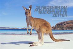 Menigeen heeft Australië op zijn of haar bucketlist staan. Jij niet? Ik geef je maar liefst 29 redenen om Australie op je bucketlist te zetten!