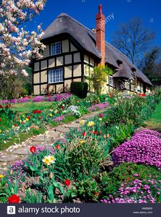 Stock Photo - Thatched and timbered cottage with Spring flowers near Ledbury, Herefordshire, England, UK House Drawing, City Drawing, English Country Cottages, She Sheds, Tudor House, Thatched Roof, Herefordshire, Cozy Cottage, Little Houses