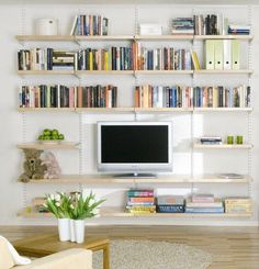 Living Room Shelving Design