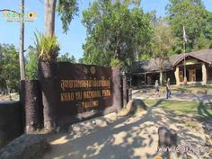 เขาใหญ่ เที่ยวอุทยานแห่งชาติเขาใหญ่ สถานที่ท่องเที่ยวเขาใหญ่ Khaoyai Att...