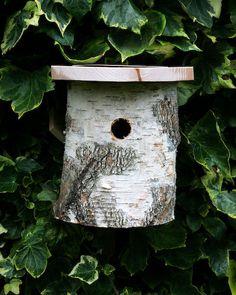 Silver Birch Nesting box from Ethical Superstore Bird Nesting Box, Nesting Boxes, Bird House Feeder, Diy Bird Feeder, Birch Branches, Birch Bark, Traditional Birdhouses, Hedgehog House, Garden Animals