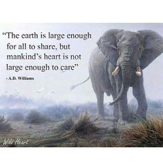 The earth is large enough for all to share but mankind's heart is not large enough to care. | A.D. Williams
