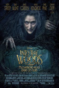 Into the Woods on DVD March 2015 starring Johnny Depp, Meryl Streep, Chris Pine, Emily Blunt. Into the Woods is a modern twist on several of the beloved Brothers Grimm fairy tales, intertwining the plots of a few choice stories and ex Meryl Streep, Disney Cinema, Disney Films, Walt Disney, Disney Family, Chris Pine, Anna Kendrick, Johnny Depp, Love Movie