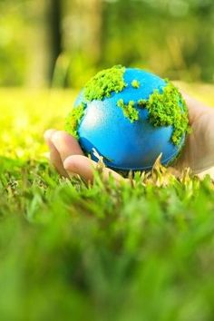 Earth Day activities and ideas for tweens