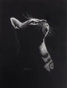 Give me food, Pleeease!! Drawing on black A3 paper