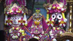 #Hare #Krishna #Iskcon #London #shringar #arti 28.2.16#live #Mayapur.tv #Jai #Baldev #Subhdra #Jagganath #Ki by dishantbt05
