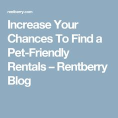 Increase Your Chances To Find a Pet-Friendly Rentals – Rentberry Blog
