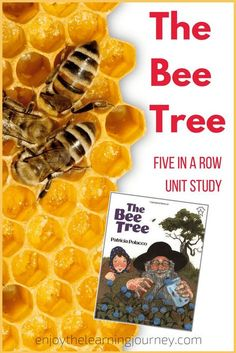 The Bee Tree is the perfect children's book for a unit study on bees. Take a peek into our Five in a Row {FIAR} homeschool experience with this book. So many fun learning activity ideas to supplement the story! Five In A Row, The Row, Project Based Learning, Fun Learning, Bee Activities, Patricia Polacco, Bee Book, Tree Study, Toddler School