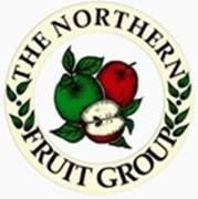 Northern Fruit Group home page | Promoting fruit growing in the North of England