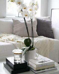 Kukat tuovat kodikkuutta ja iloa