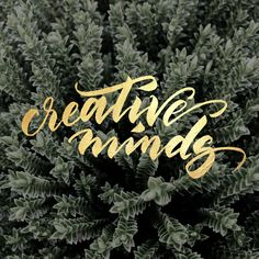 Creative Minds Lettering. #gold #lettering #handwriting #calligraphy #brushpen #foil #metallic #texture