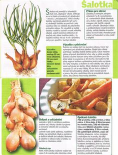 - Dieta Detox, Carrots, Home And Garden, Herbs, Vegetables, Carrot, Vegetable Recipes, Herb, Spice