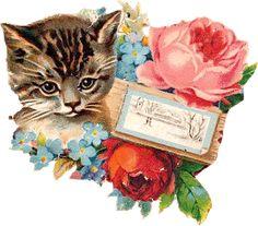 Zibi Vintage Scrap: Kociaki