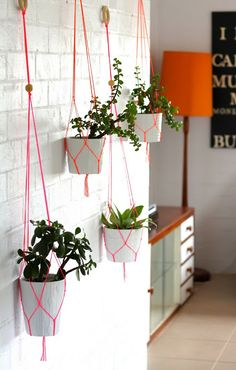 "shes not so plain jane: Handmade Macrame Plant Hangers. Blogger says, ""If you are are interested in purchasing one of my creations just email me shesnotsoplainjane@gmail.com for all the information."""