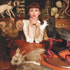 Sarina Brewer and her amazing taxidermy art.