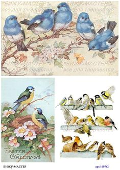 Print the picture in the high-end thin & density& of rice paper. Unlike mulberry paper, this paper no streaks and foreign inclusions, our paper has a uniform structure, which is very important if you want to get a flat and neat surface of the product. Rice Paper Decoupage, Decoupage Art, Decoupage Vintage, Vintage Dog, Vintage Birds, Decoupage Printables, Decoupage Furniture, Printable Paper, Collage Sheet