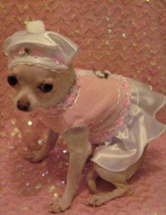 Pink Parfait Dog Harness Dress 3 Piece Set includes Dress, Hat and Leash