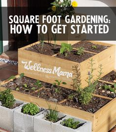 Square foot raised bed gardening-how to get started