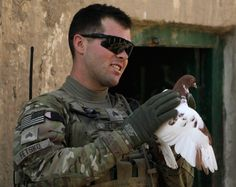 A U.S. Army soldier of Attack Co, 2nd Battalion, 1st Infantry Regiment holds a dove while taking a brief rest at the Afghan local police camp during a patrol in Zharay district in Kandahar province, Afghanistan on October 25, 2012 by Erik De Castro