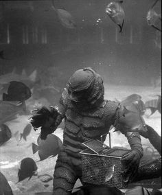 creature from the black lagoon, catching fish