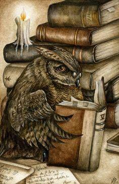 reading owl by Marc Potts.love the owl! Creative Illustration, Illustration Art, I Love Books, Books To Read, Reading Books, Library Books, Wise Owl, Owl Art, Book Nooks