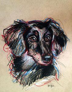 Pet Portrait Sketches - Julie Pfirsch pencil, pen and colored pencil on tan toned paper www.juliepfirsch.com