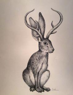 Jackalope Head Drawing Jackalope.jpg