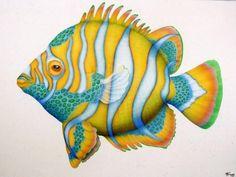 Marine Wildlife Art by Marcia Perry 36 Sea Life Art, Sea Art, Watercolor Sketchbook, Watercolor Art, Cartoon Fish, Architecture Tattoo, Mural Painting, Paintings, Fish Design