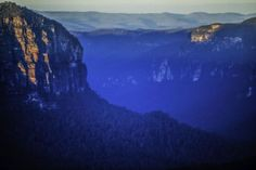 The Blue Mountains in #Australia is a lovely place for a bushwalk