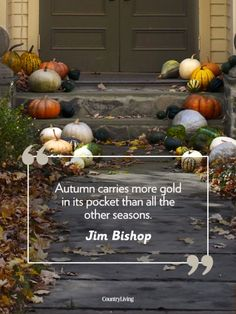 You'll want to read these fabulous fall quotes that sum up the way we feel about fall. These festive sayings about autumn will remind you of all the beauty the season has to offer from September through November.