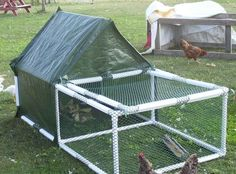 Build PVC Chicken Tractor - Bing Images site has a 'blueprint' for this.