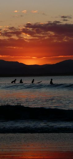 Surfers at Sunset, Byron Bay, Australia. Beautiful Places To Visit, Wonderful Places, Beautiful World, Ocean Waves, Beach Waves, Vincent Van Gogh, Surfing Photos, Sunset Colors, Byron Bay