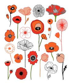 Poppies | Lisa Congdon Art + Illustration | Bloglovin'