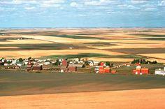 Summer Landscape, Saskatchewan