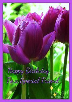 Purple Tulips Birthday Greeting Greeting Card