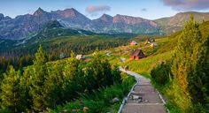 Znalezione obrazy dla zapytania hala gąsienicowa Mountains, Travel, Viajes, Destinations, Traveling, Trips, Bergen