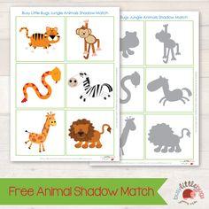 Free Jungle Animal Shadow Match Busy Little Bugs