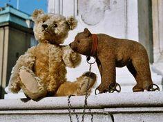 Steiff-Teddy und Räderbär