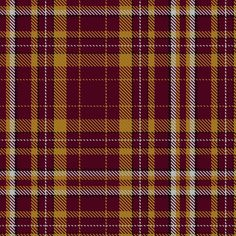 Tartan image: Motherwell Football Club Official